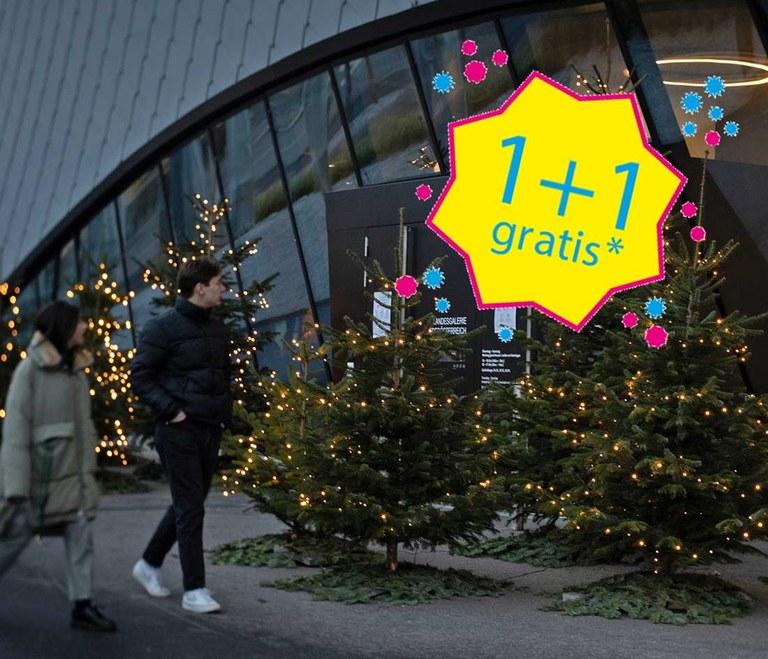 Mit der 1+1-Aktion steuern wir Ihrem Besuch ein kleines Weihnachtsspecial bei. Wenn Sie uns am 25. Dezember besuchen, erhalten Sie 1+1 gratis auf das reguläre Eintrittsticket in der Landesgalerie Niederösterreich, im Karikaturmuseum Krems, der Kunsthalle Krems und dem Forum Frohner.